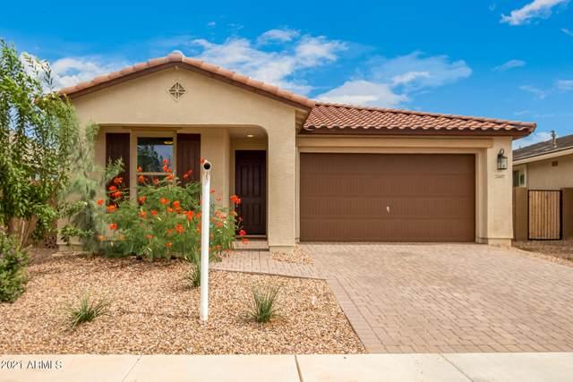 21607 S 226TH Place, Queen Creek, AZ 85142 (MLS #6302803) :: Dijkstra & Co.
