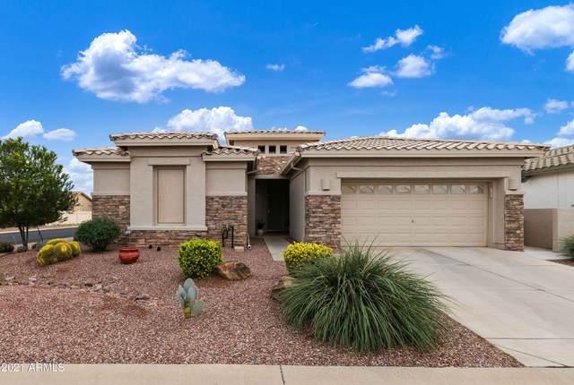 24919 S Glenburn Drive, Sun Lakes, AZ 85248 (MLS #6302957) :: Yost Realty Group at RE/MAX Casa Grande