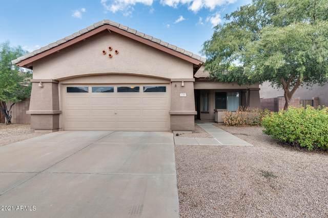 1184 E Locust Drive, Chandler, AZ 85286 (MLS #6302983) :: Elite Home Advisors