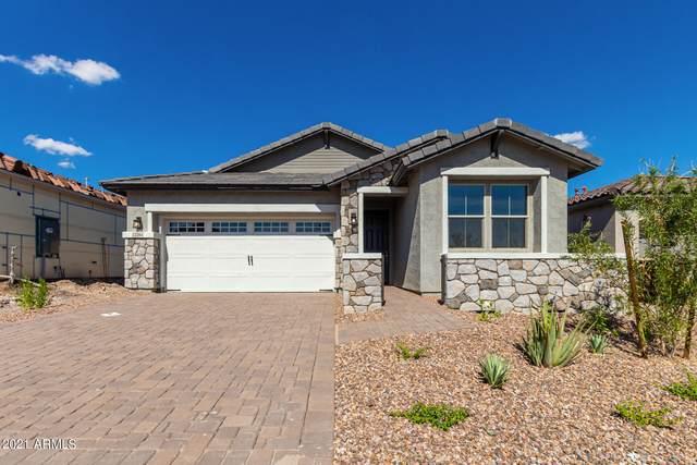 13384 W Red Range Way, Peoria, AZ 85383 (MLS #6303078) :: Elite Home Advisors