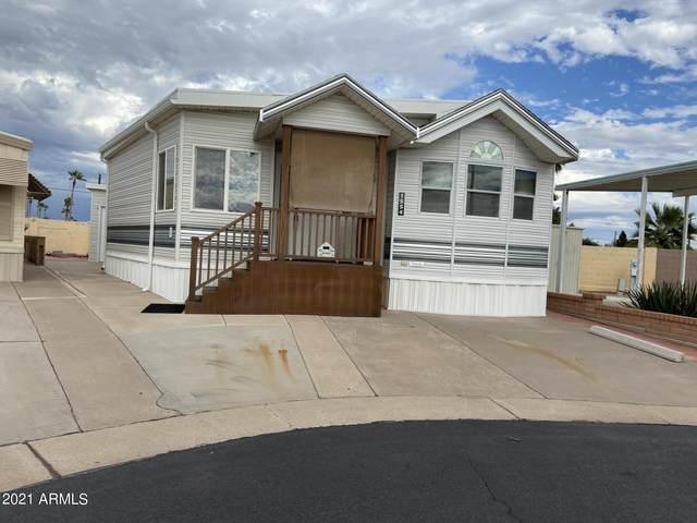 1554 S Cheyenne Avenue, Apache Junction, AZ 85119 (MLS #6303228) :: Elite Home Advisors