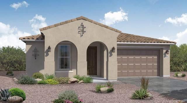 4382 N Pioneer Drive, Litchfield Park, AZ 85340 (MLS #6303242) :: Elite Home Advisors