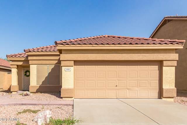 1086 E Pinto Drive, Gilbert, AZ 85296 (MLS #6303278) :: Elite Home Advisors