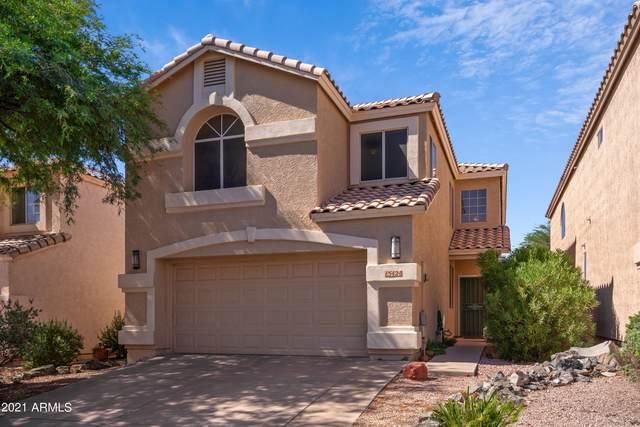 15424 S 14TH Place, Phoenix, AZ 85048 (MLS #6303330) :: Klaus Team Real Estate Solutions