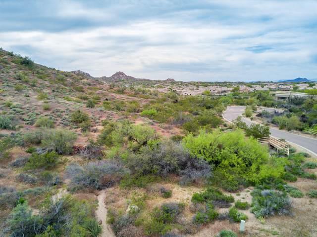 27686 N 113TH Place, Scottsdale, AZ 85262 (MLS #6303591) :: The Daniel Montez Real Estate Group