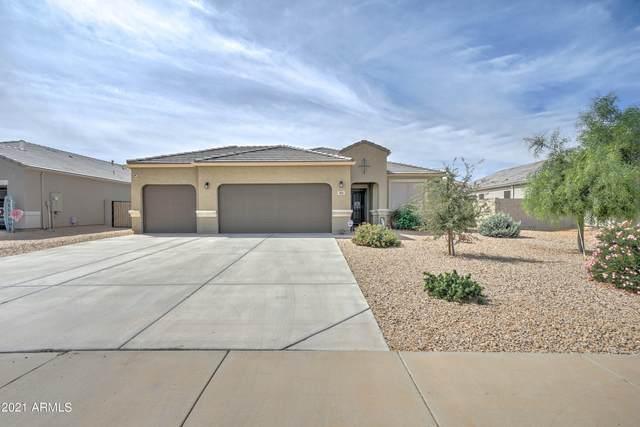 10665 E Sunflower Court, Florence, AZ 85132 (MLS #6303784) :: Elite Home Advisors