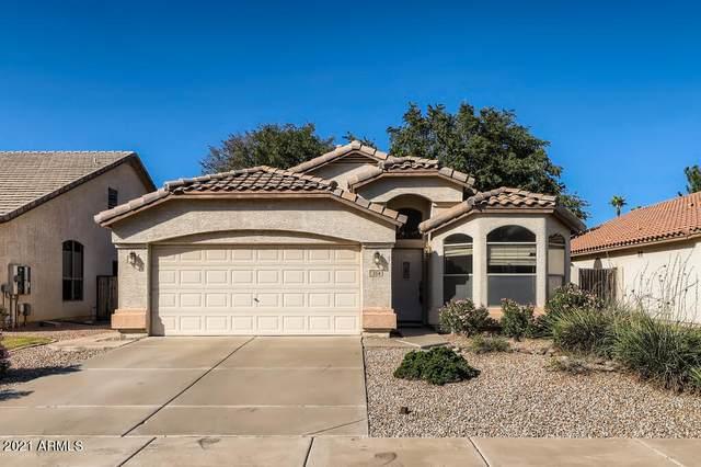 554 E Cathy Drive, Gilbert, AZ 85296 (MLS #6304396) :: The Daniel Montez Real Estate Group