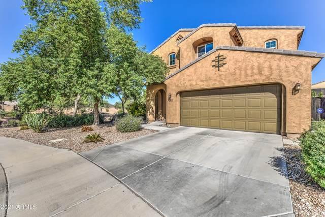 818 E Del Rio Street, Chandler, AZ 85225 (MLS #6304500) :: Elite Home Advisors