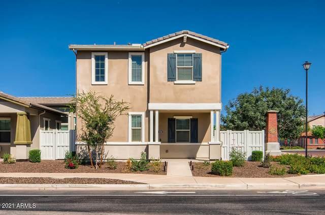 3749 E Stiles Lane, Gilbert, AZ 85295 (MLS #6304867) :: Elite Home Advisors