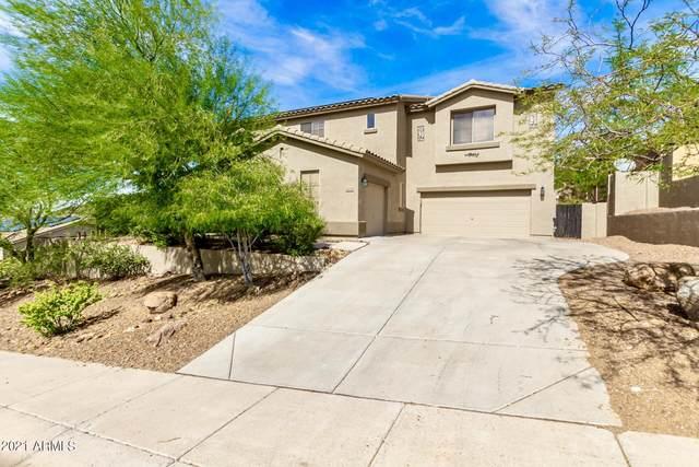 6134 W Fetlock Trail, Phoenix, AZ 85083 (MLS #6305208) :: The Ellens Team