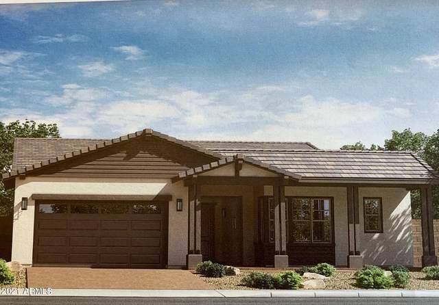 7814 S 35th Street S, Phoenix, AZ 85042 (MLS #6305317) :: Elite Home Advisors