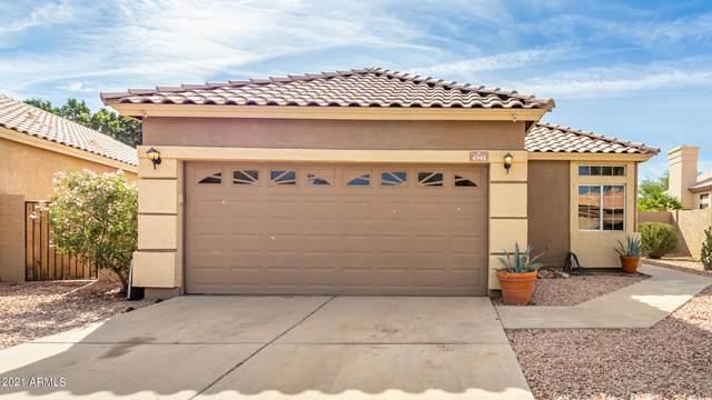 4341 E South Fork Drive, Phoenix, AZ 85044 (MLS #6305456) :: Dave Fernandez Team   HomeSmart