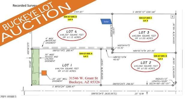 315XX W Grant Street, Buckeye, AZ 85326 (MLS #6305526) :: Klaus Team Real Estate Solutions