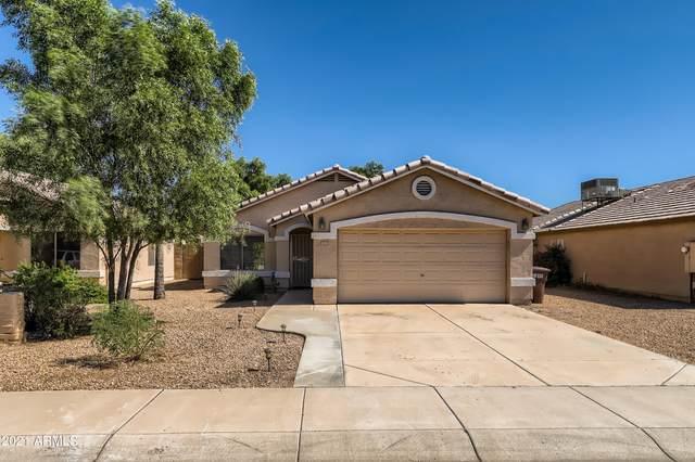 9227 N 85TH Drive, Peoria, AZ 85345 (MLS #6305710) :: Elite Home Advisors