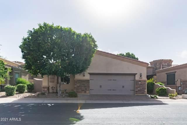 6202 E Mckellips Road #285, Mesa, AZ 85215 (MLS #6305852) :: Yost Realty Group at RE/MAX Casa Grande