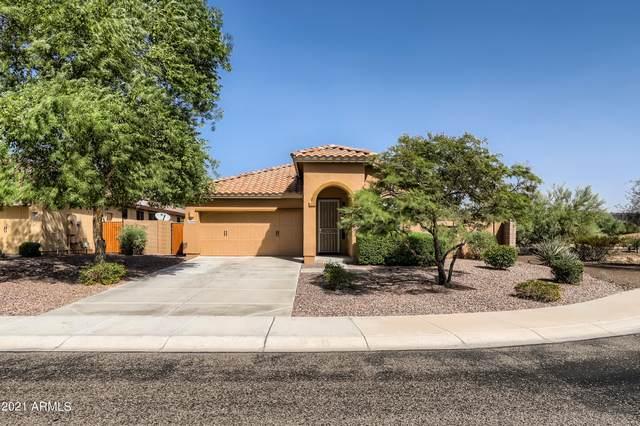 12004 W Eagle Ridge Lane, Peoria, AZ 85383 (MLS #6306331) :: Long Realty West Valley