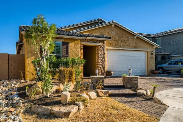 10464 W Rosewood Lane, Peoria, AZ 85383 (MLS #6306722) :: The Property Partners at eXp Realty
