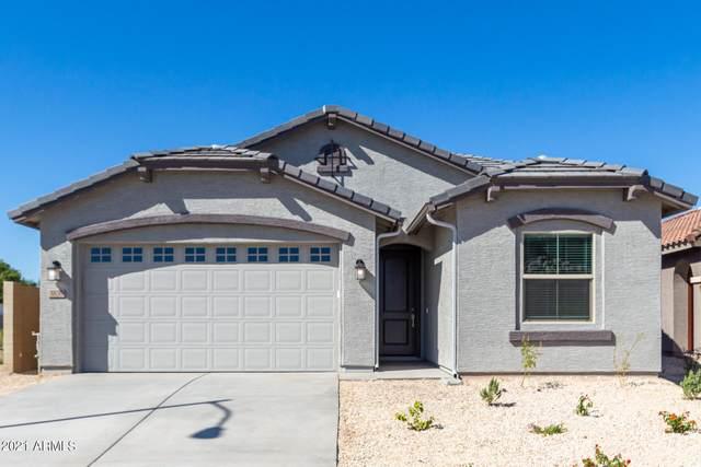 3836 S 64TH Drive, Phoenix, AZ 85043 (MLS #6306762) :: Hurtado Homes Group