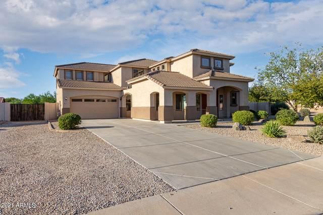 74 E Paso Fino Way, San Tan Valley, AZ 85143 (MLS #6307001) :: Elite Home Advisors