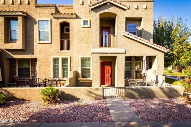 6710 E University Drive #135, Mesa, AZ 85205 (MLS #6307316) :: Yost Realty Group at RE/MAX Casa Grande