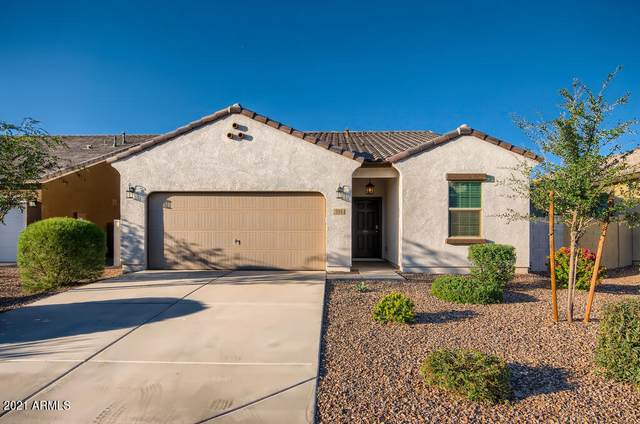 394 W Mammoth Cave Drive, San Tan Valley, AZ 85140 (MLS #6307398) :: D & R Realty LLC