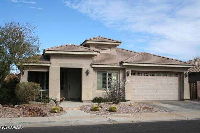 1330 E Redwood Drive, Chandler, AZ 85286 (MLS #6307428) :: Elite Home Advisors