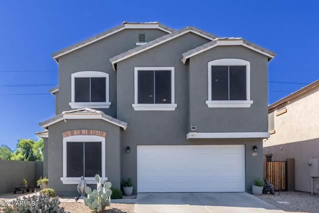 33914 N Cobble Stone Drive, San Tan Valley, AZ 85143 (MLS #6307476) :: Klaus Team Real Estate Solutions