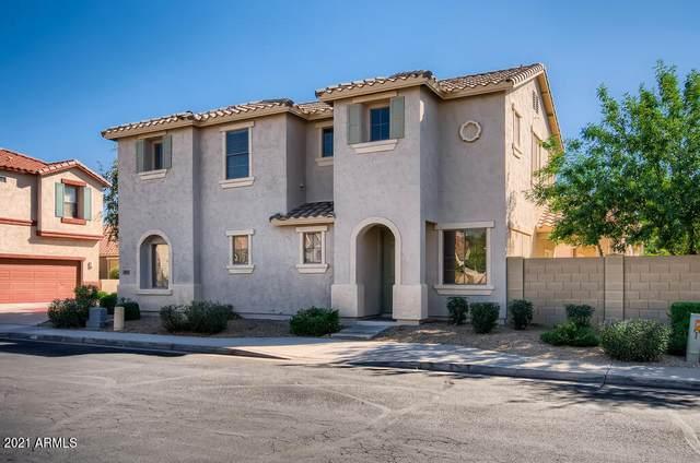 985 E Cantebria Drive, Gilbert, AZ 85296 (MLS #6307483) :: Zolin Group
