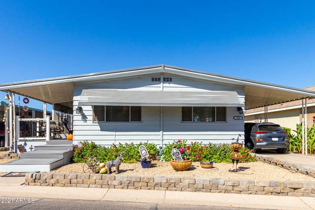10960 N 67th Avenue #156, Glendale, AZ 85304 (MLS #6307511) :: Elite Home Advisors