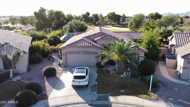 4591 E Sycamore Court, Gilbert, AZ 85298 (MLS #6307596) :: Arizona Home Group