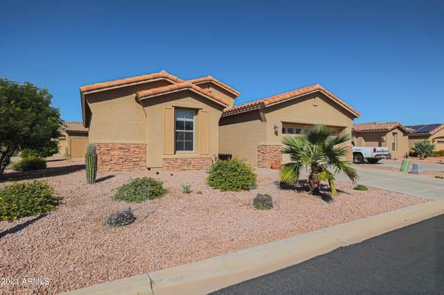 10334 E Cherrywood Court, Sun Lakes, AZ 85248 (MLS #6307639) :: Zolin Group