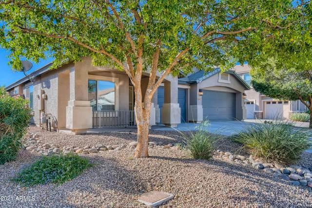 907 E Shari Street, San Tan Valley, AZ 85140 (MLS #6308017) :: D & R Realty LLC