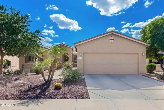 42967 W Whimsical Drive, Maricopa, AZ 85138 (MLS #6308506) :: Elite Home Advisors
