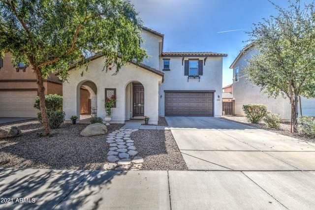 1177 E Hampton Lane, Gilbert, AZ 85295 (MLS #6308900) :: The Garcia Group