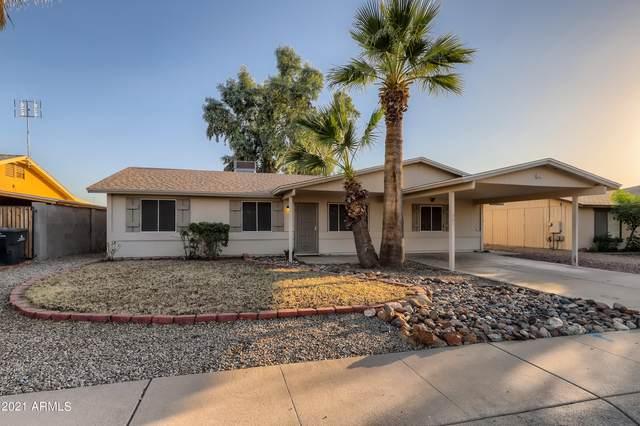 901 W Tonopah Drive, Phoenix, AZ 85027 (MLS #6309580) :: Elite Home Advisors