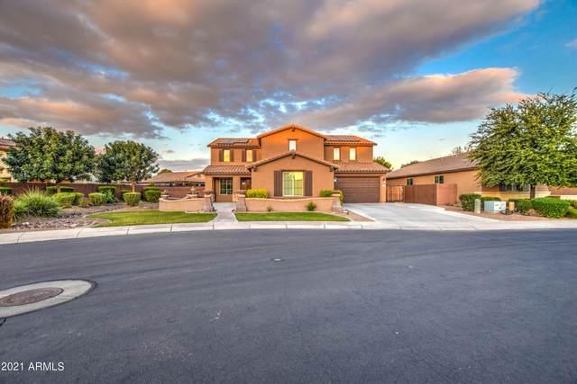 41389 N Jarnigan Place, San Tan Valley, AZ 85140 (MLS #6309582) :: Yost Realty Group at RE/MAX Casa Grande