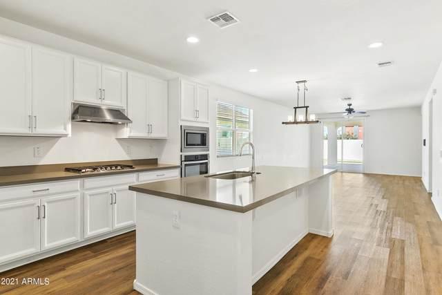 9912 E Thatcher Avenue, Mesa, AZ 85212 (MLS #6309753) :: Elite Home Advisors