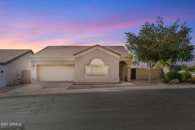 1166 N 87TH Place, Mesa, AZ 85207 (MLS #6309770) :: Arizona Home Group
