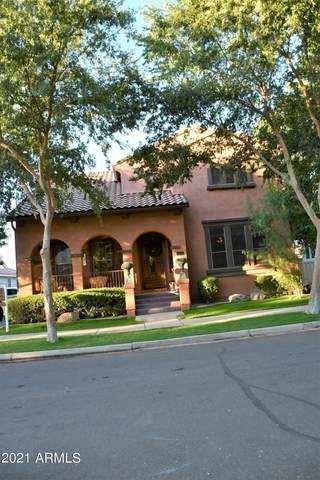 2992 E Camellia Drive, Gilbert, AZ 85296 (MLS #6309856) :: Zolin Group
