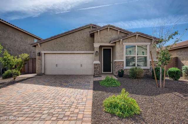217 E Monza Way, San Tan Valley, AZ 85140 (MLS #6309905) :: D & R Realty LLC