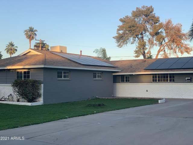 519 N Evergreen Street N, Chandler, AZ 85225 (MLS #6310713) :: The Daniel Montez Real Estate Group