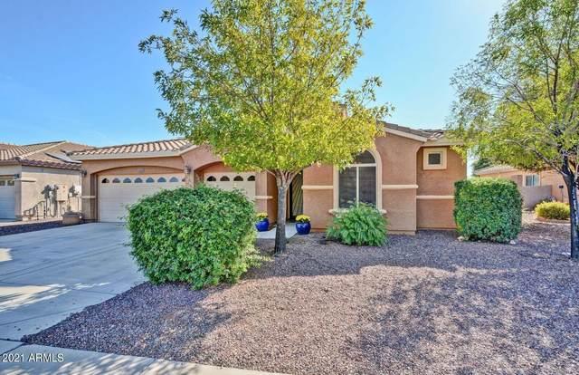 5117 N 193RD Drive, Litchfield Park, AZ 85340 (MLS #6311054) :: Arizona Home Group