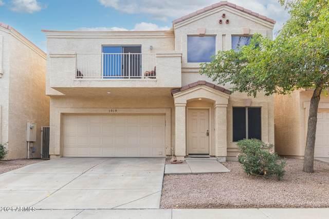 1019 W Julie Drive, Tempe, AZ 85283 (MLS #6311087) :: Power Realty Group Model Home Center
