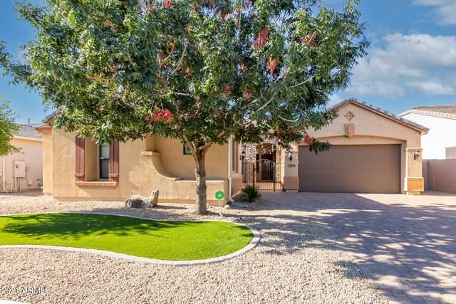 4220 N 161ST Avenue, Goodyear, AZ 85395 (MLS #6311433) :: The Daniel Montez Real Estate Group