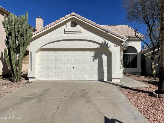 3732 E Taro Lane, Phoenix, AZ 85050 (MLS #6312057) :: Yost Realty Group at RE/MAX Casa Grande