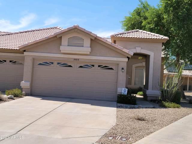 20616 N 103RD Lane, Peoria, AZ 85382 (MLS #6312068) :: Kepple Real Estate Group