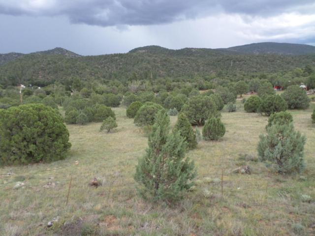 298 E Hindu Crossing, Young, AZ 85554 (MLS #4936422) :: The Results Group