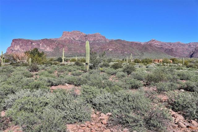 6878 E Diamondback Lane, Apache Junction, AZ 85119 (MLS #5397778) :: Brett Tanner Home Selling Team