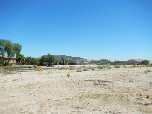 19815 W Whitton Avenue, Buckeye, AZ 85396 (MLS #5431139) :: Brett Tanner Home Selling Team