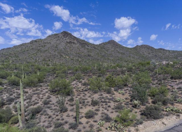 398XX N 50th Street, Cave Creek, AZ 85331 (MLS #5472594) :: The Daniel Montez Real Estate Group